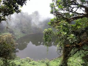 Mt Cameroon crater lake